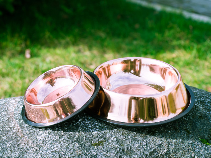 Dog bowls copper bowl