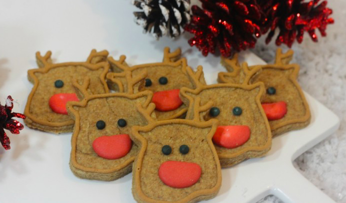 Holiday dog treats, reindeer cookies