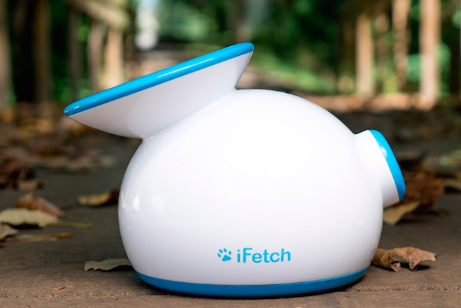 Holiday Gift Guide, iFetch