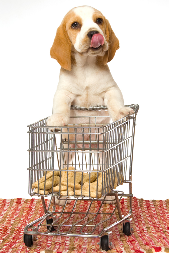 Myth-Busting Dog Food Labels