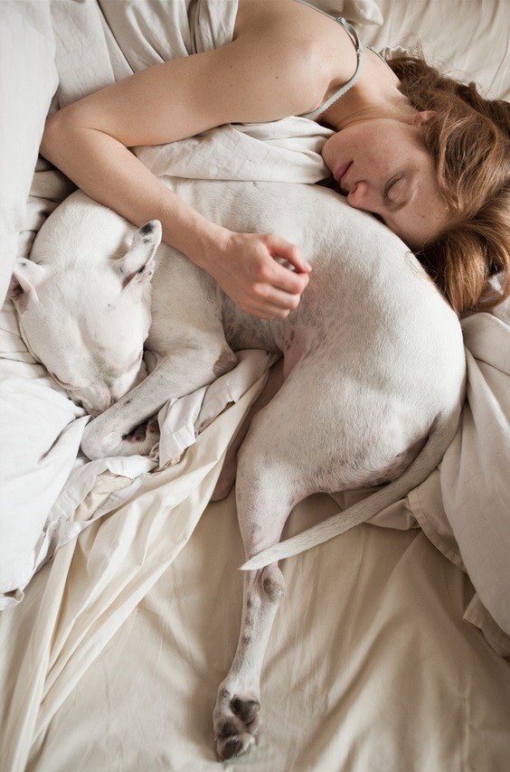 Sleeping with pets, good idea