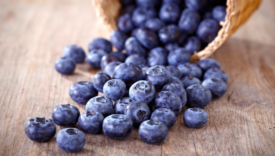 8 Reasons Why Blueberries Are Your Dog's BFF