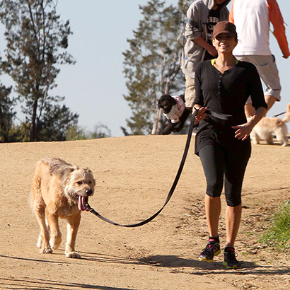 Celebrities working out with their dogs Eva Mendes