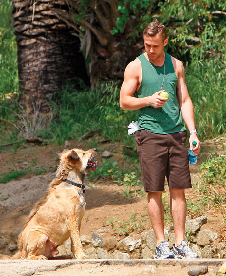 Celebrities working out with their dogs Ryan Gosling