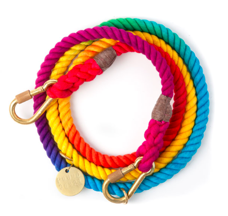 impressive dog leashes, rainbow bright
