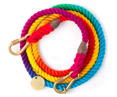 6 Leashes That Will Impress at the Dog Park