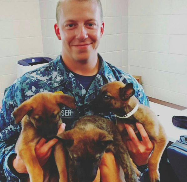 Military working dogs, solider and puppies