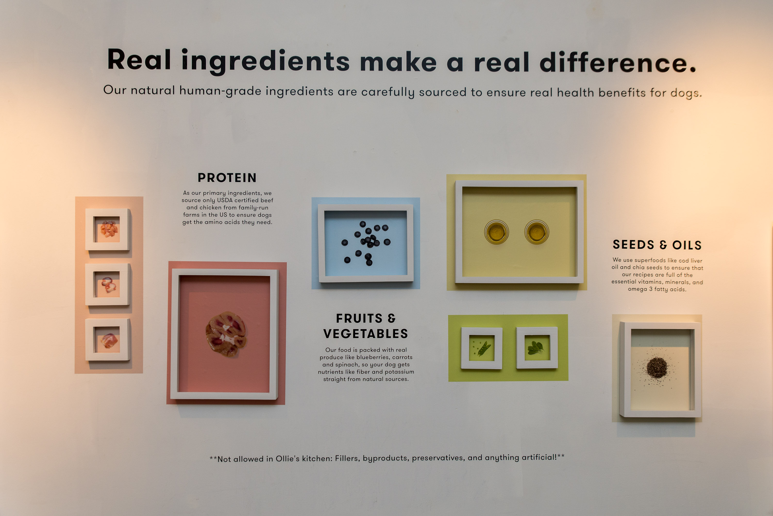 Ollie launch event ingredient wall
