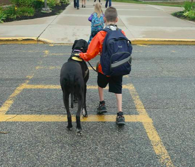 service dog Team Hunter & Wendy walk to school