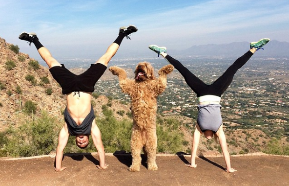 Working out with  your dog gymnastics dog