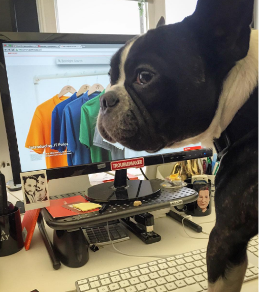 Dog-friendly offices Thrillist/JackThreads