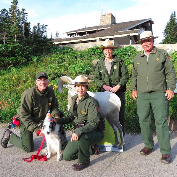 Natioanl Bark Ranger Gracie and Park Rangers