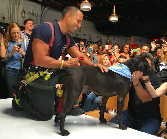 Mr.Bones and Co Rescue the Runway rescue dog and firefighter