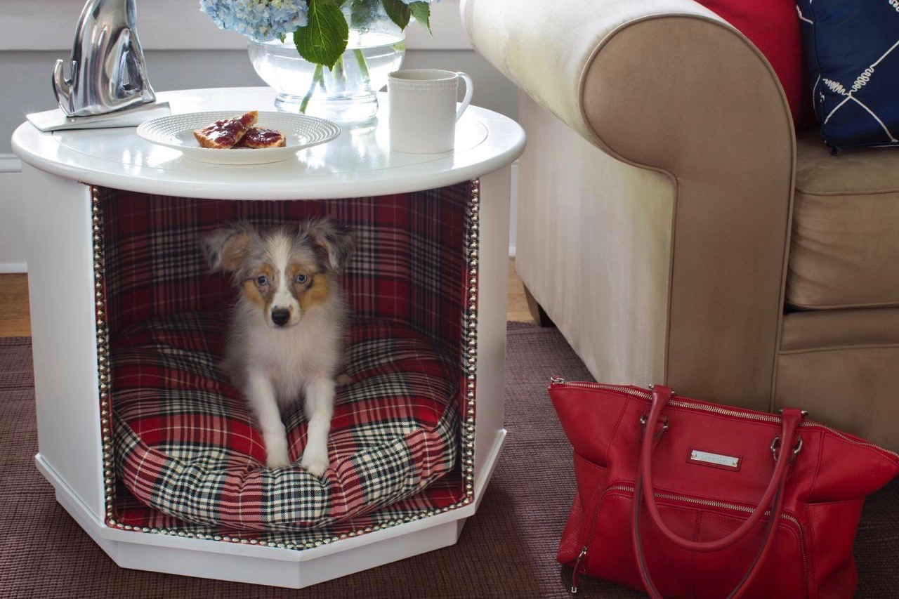 The At-Home Hangouts Your Pup Would Totally Pin