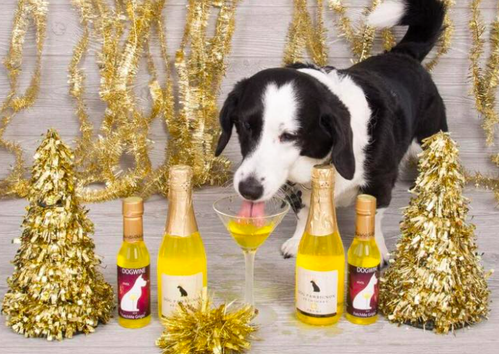 Now Your Pup Can Booze With You Too (Sort Of)