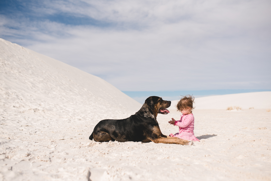 6 Reasons Why Pups are Great For Kiddos