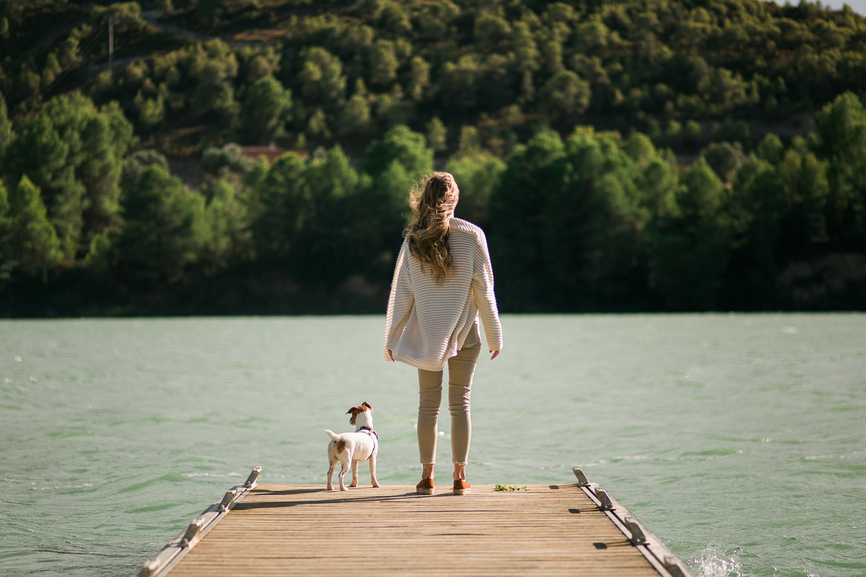 Why Dog Meditation Is a Thing and How To Do It