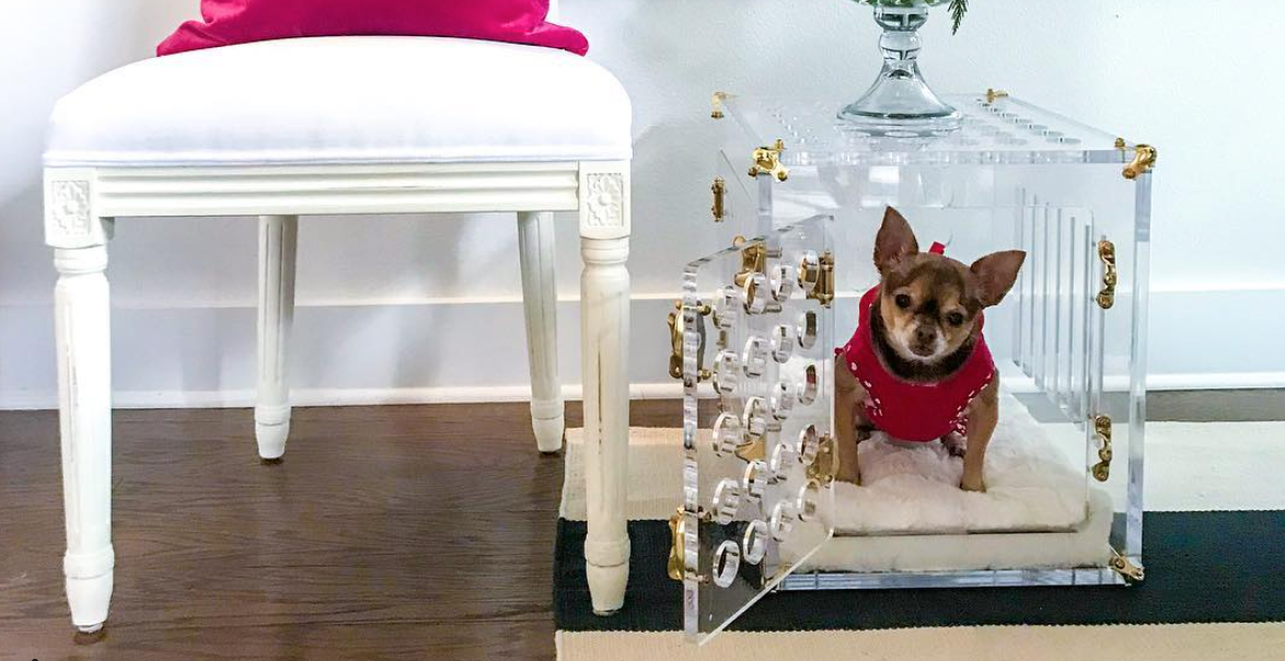 10 Stylish Crates You and Your Pup Will Love