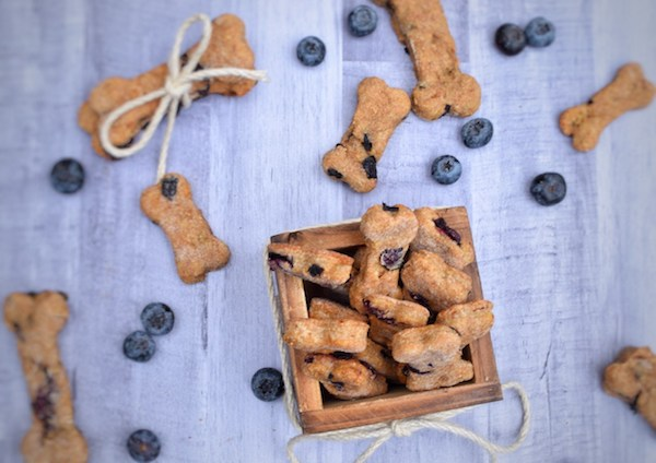 4-Ingredient Blueberry Dog Treats
