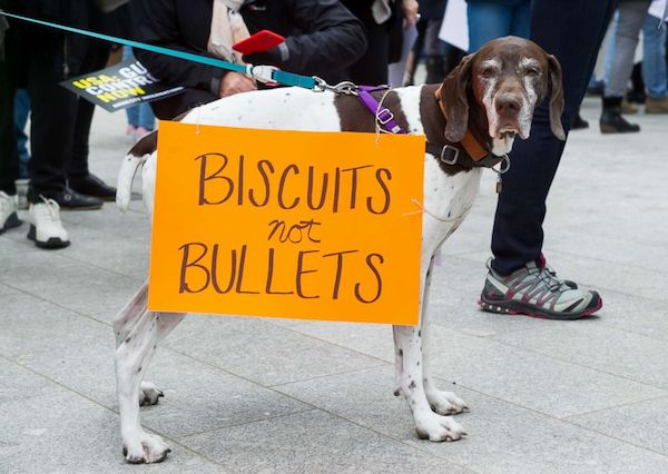 Doggie activists